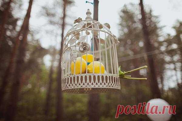 Счастливый желтый: Свадьба Лии и Миши - WeddyWood