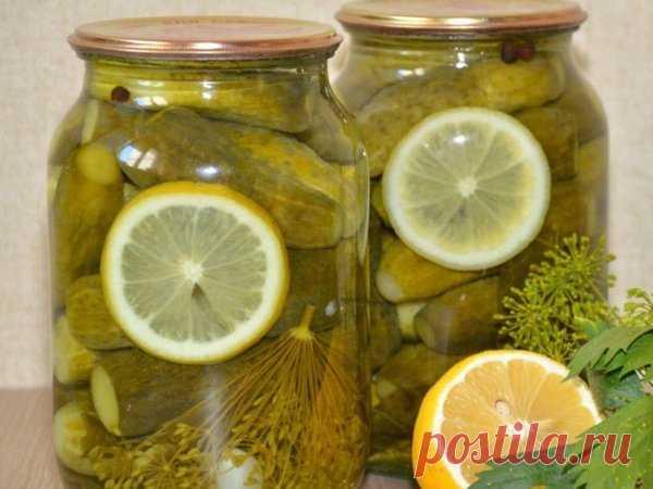 Огурцы на зиму «Пражские» с лимоном | По Секрету Всему Свету | Яндекс Дзен