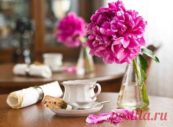 Постеры цветы / Пионы — Завтрак и пион