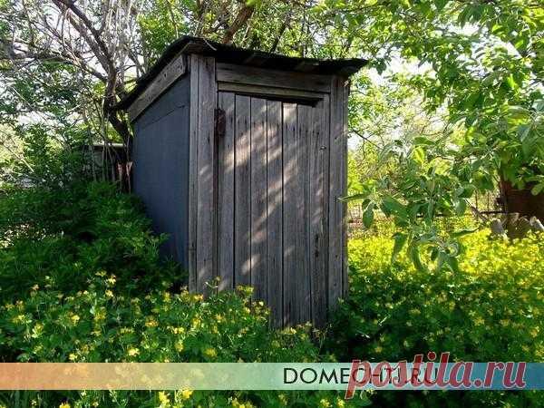 Туалет на даче своими руками: этапы постройки и обустройства   Дом Мечты