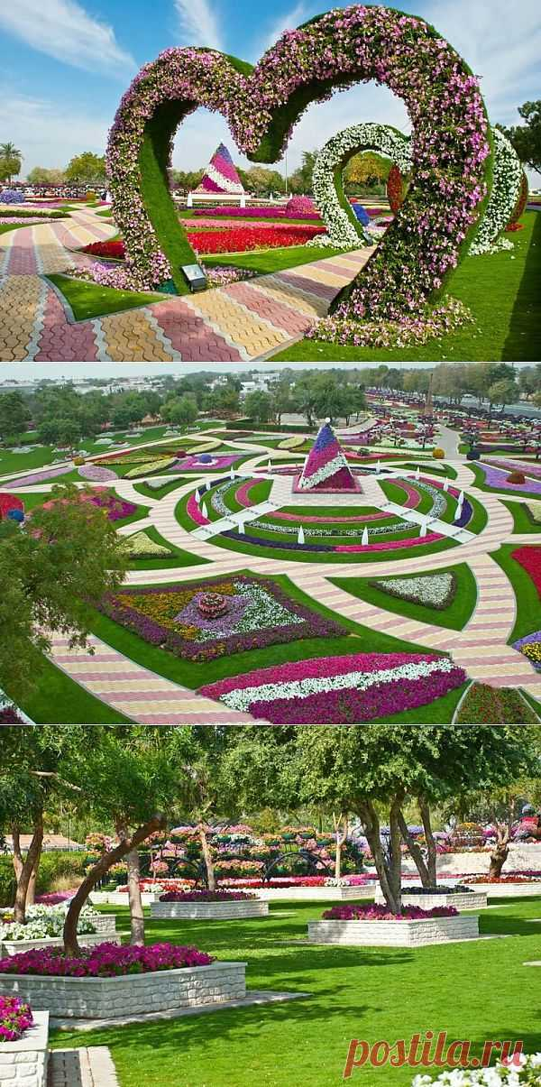 Цветочный сад Аль-Айн Paradise