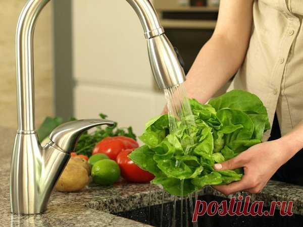 9 продуктов, которые вы никогда не должны мыть перед употреблением | Путь к здоровью | Яндекс Дзен
