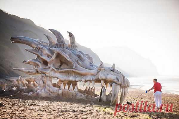 Драконья голова на побережье в качестве рекламы телесериала «Игра Престолов» http://aquariumistika.mirtesen.ru/blog/43656722686