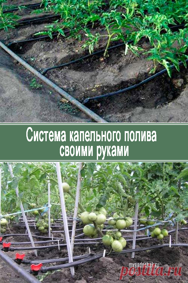 System of drop watering by the hands