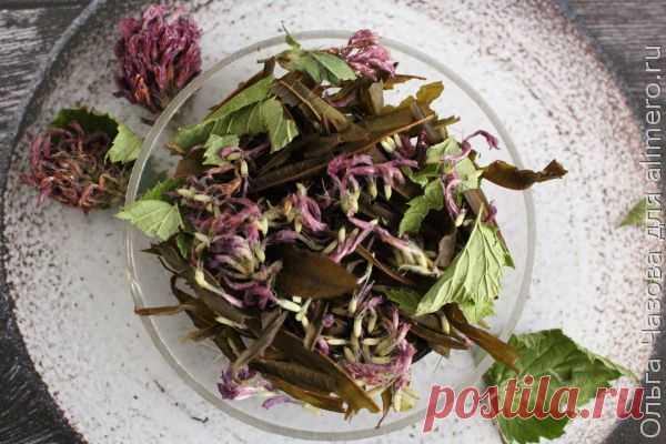 👌 Ароматный чайный сбор 2 на зиму, рецепты с фото