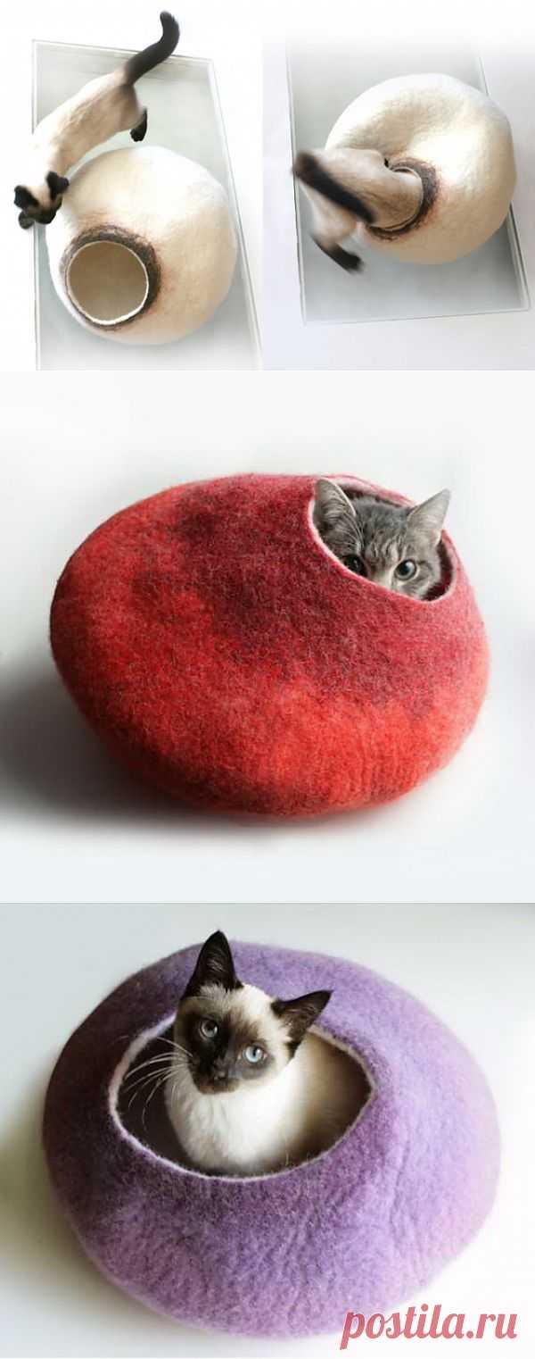 Кошке нужен дом... / Для питомцев / Модный сайт о стильной переделке одежды и интерьера