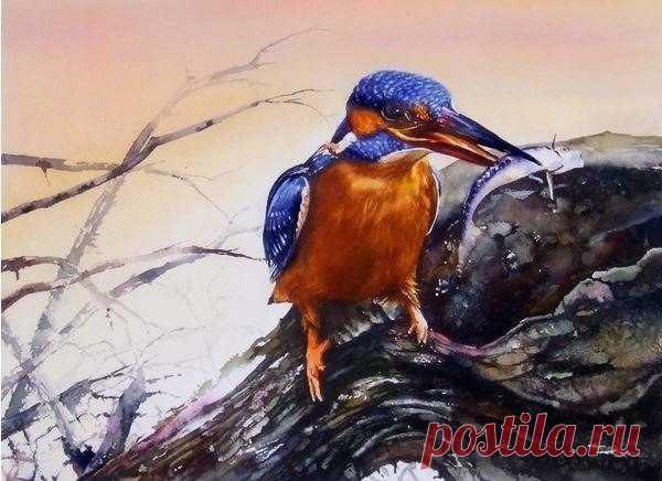 Потрясающие акварели от художника Peter Williams - животные в картинах