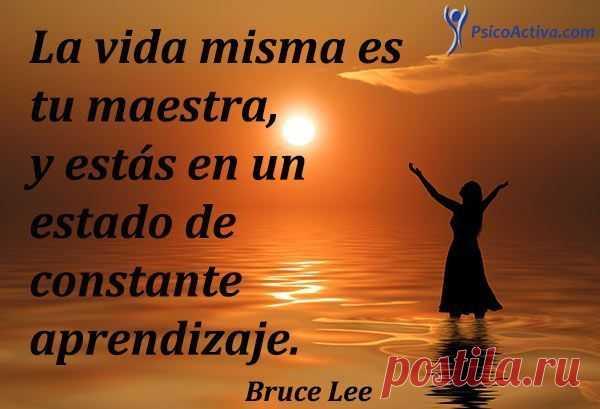 70 Frases De Bruce Lee Sobre La Vida Y La Conciencia