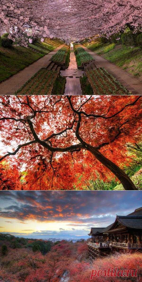 Пейзажи Японии. Фотограф Agustin Rafael Reyes