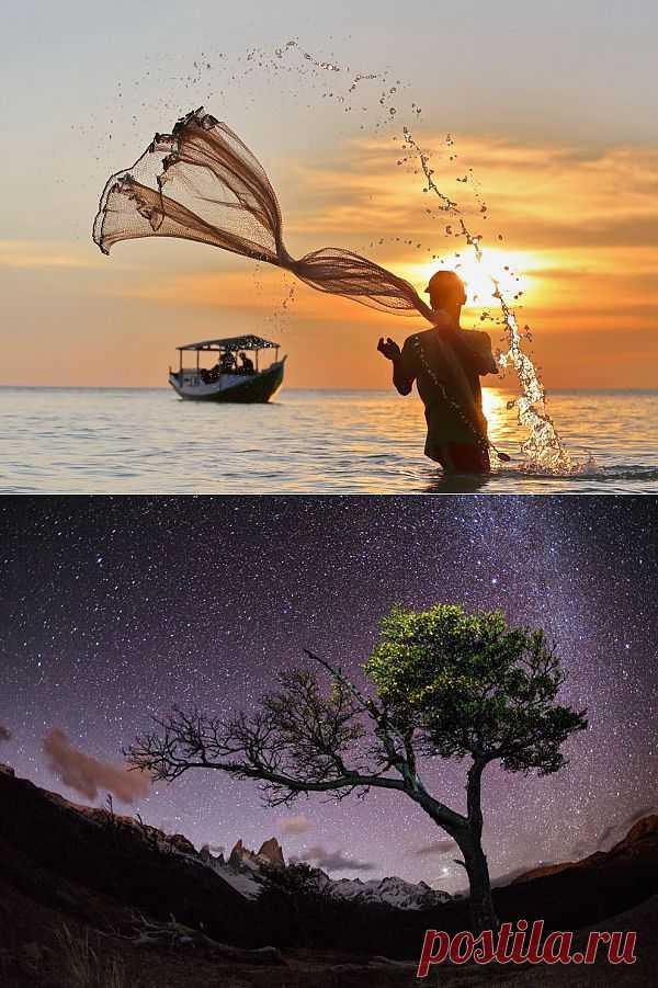 National Geographic: лучшие фото июня 2013