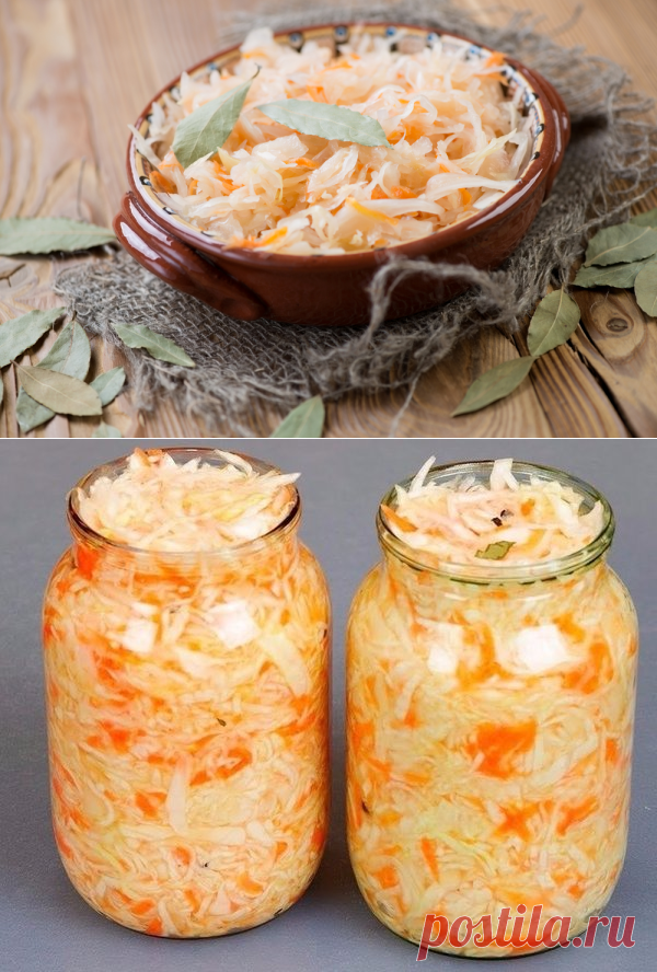 Рецепты засолки капусты с картинками