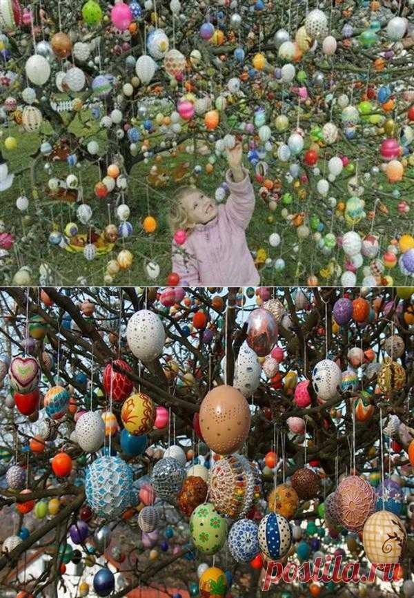Дерево, украшенное пасхальными яйцами в Германии.