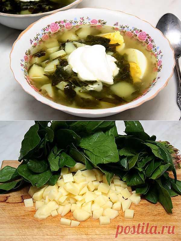 Полезный суп из шпината. Шпинат содержит много полезных веществ для организма. Он будет всегда держать вас в здравие.