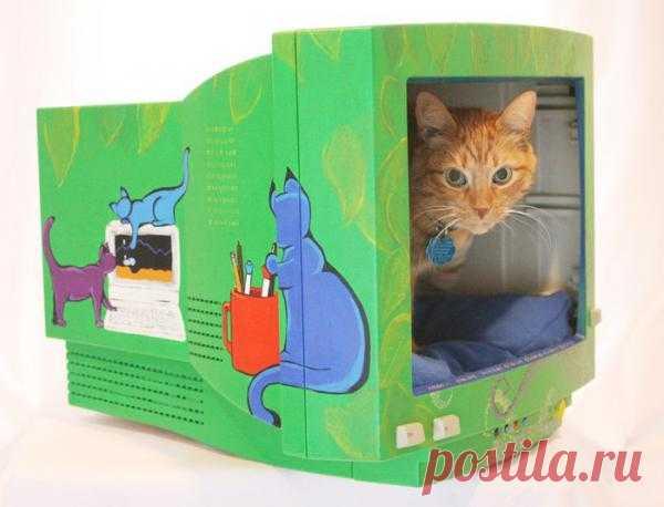 Старый монитор - дом для кошки!