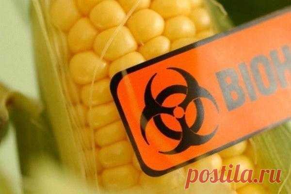 Чёрный список производителей ГМО-продуктов.