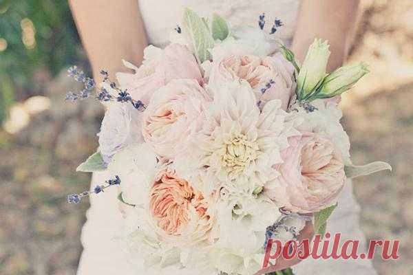 Вопросы и ответы: флористика на свадьбе. Часть 2 - WeddyWood