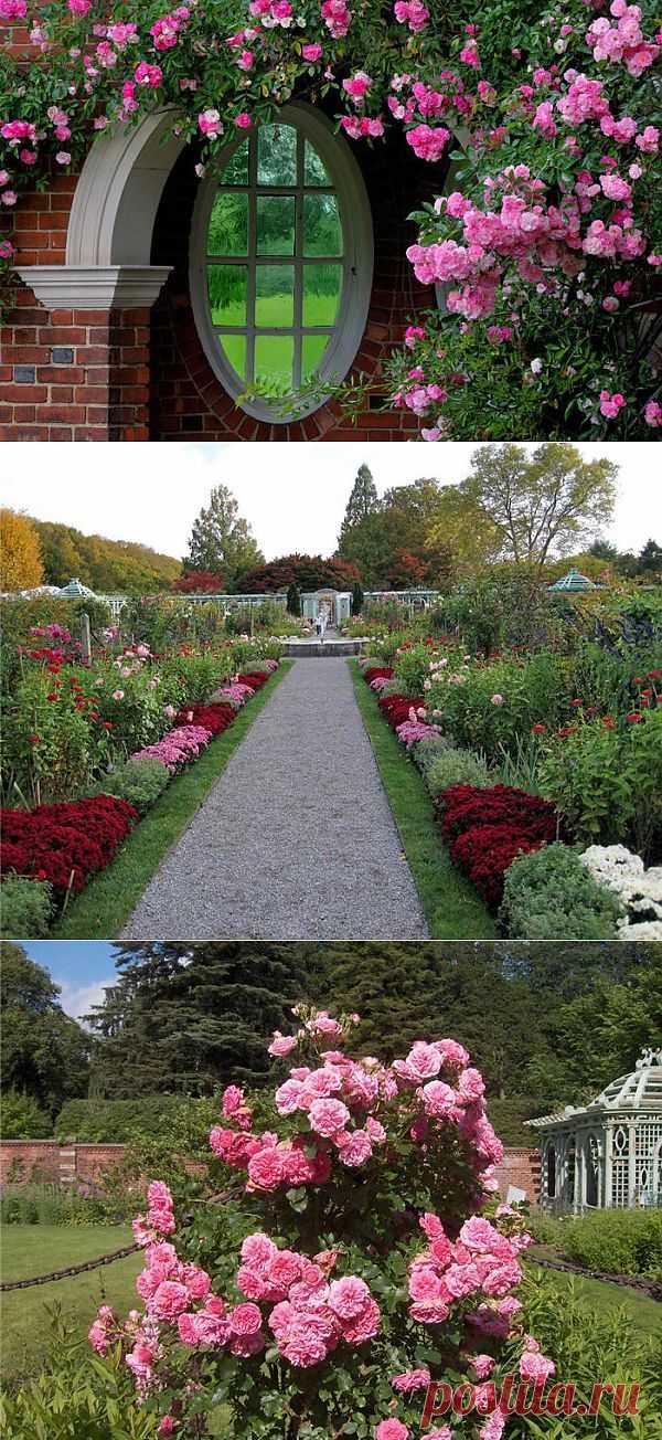 Сады Олд Вестбури .