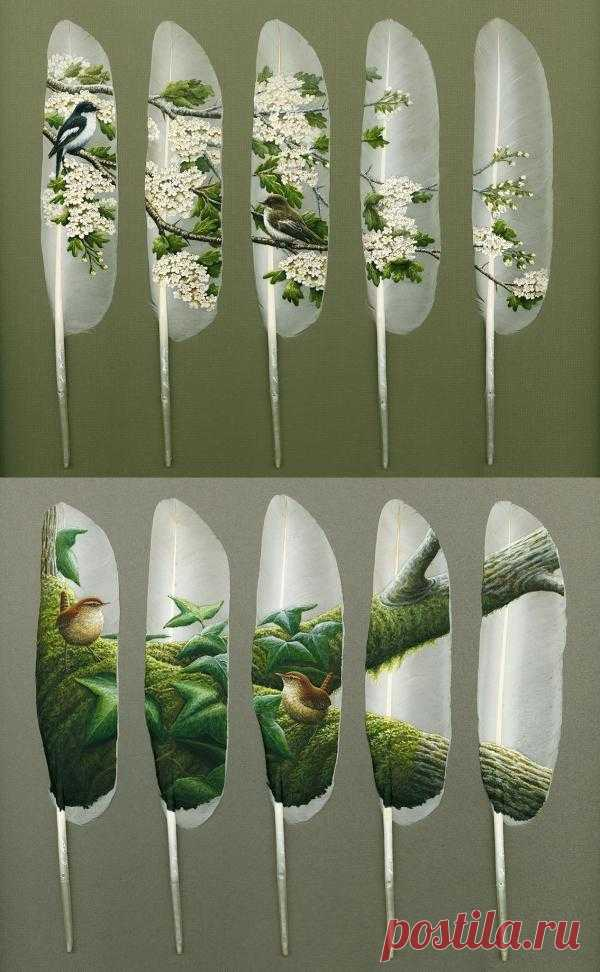 Лебединые перья как холст для шедевров использует художник-самоучка Ян Дэви