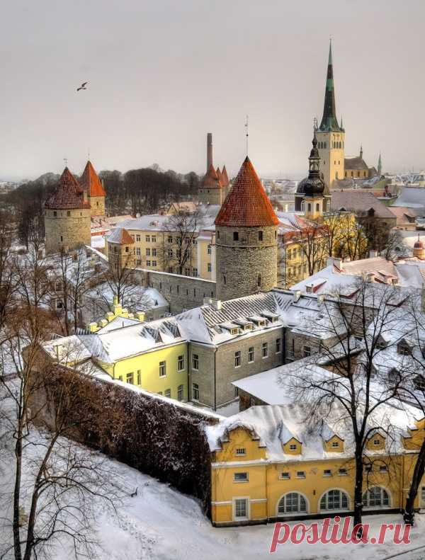 Прекрасный зимний Таллин. Эстония