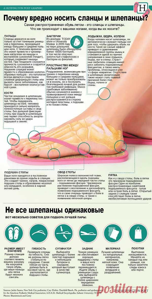 Инфографика: Не все сланцы одинаково полезны | Лайфхакер