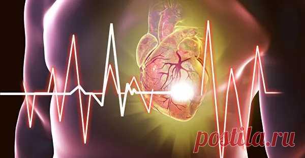 Ученые рассказали, как укрепить сердце и сосуды - РИА Новости, 03.02.2020