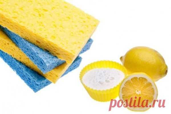 Нужный совет - лимонная тряпка, против пыли