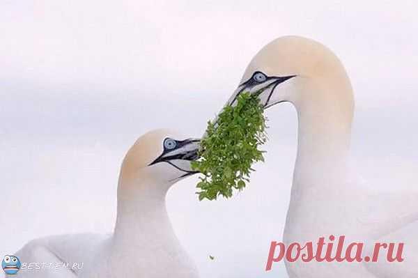 Красивые фотографии со смыслом. (34 фото) | Картинки со смыслом