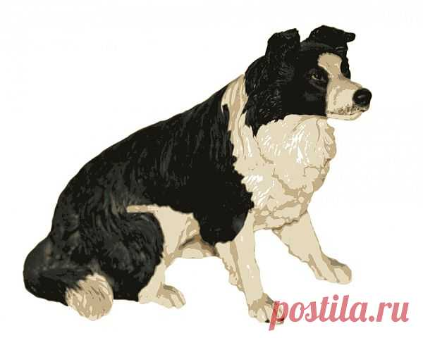 Dog Clipart  Free Stock Photo HD - Public Domain Pictures