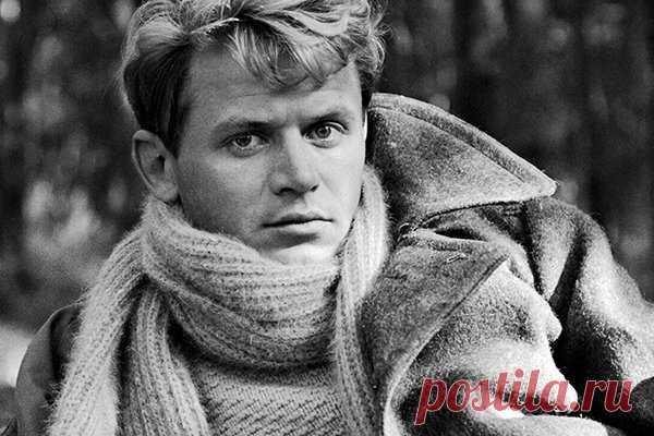 Сергей Никоненко  Советские актеры, которым доставалось больше всего ролей