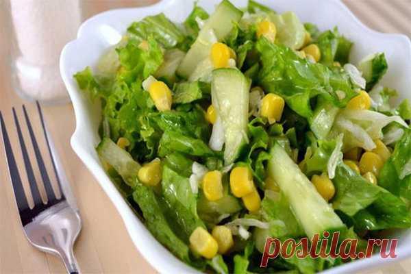 ПП рецепт жиросжигающего салата для похудения №3   Похудение и стройная фигура   Яндекс Дзен
