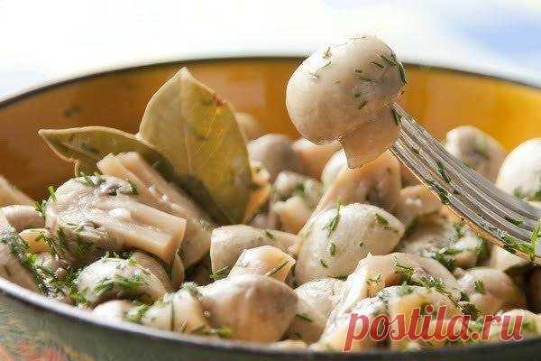 Замечательные грибочки в легком маринаде.  Обязательно попробуйте!  Вам потребуется:  500 гр шампиньонов 2-3 зубчика чеснока 50 мл 5% яблочного уксуса 50 мл растительного масла 1/4 стакана воды 4-5 лавровых листочков 2 ч. ложки сахара 1 ч. ложка соли 10 горошин черного перца зелень укропа  Как готовить:  1. Грибы вымыть, крупные грибы нарезать на половинки или четвертинки.  2. Чеснок выдавить через пресс.  3. В глубокой сковороде разогреть растительное масло, положить гриб...