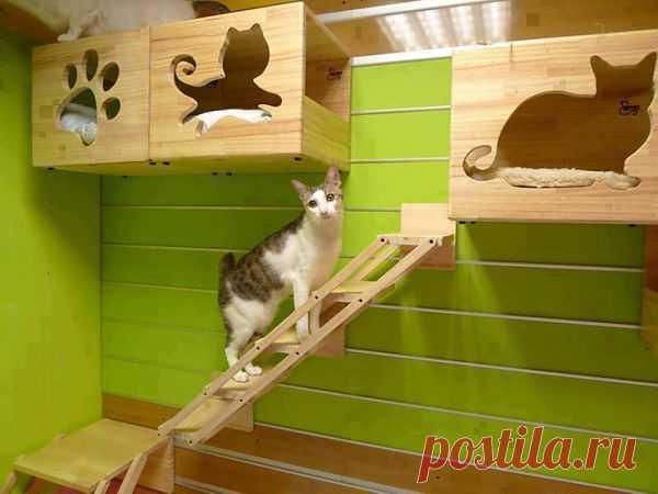 Домик для кошек / Для питомцев / Модный сайт о стильной переделке одежды и интерьера