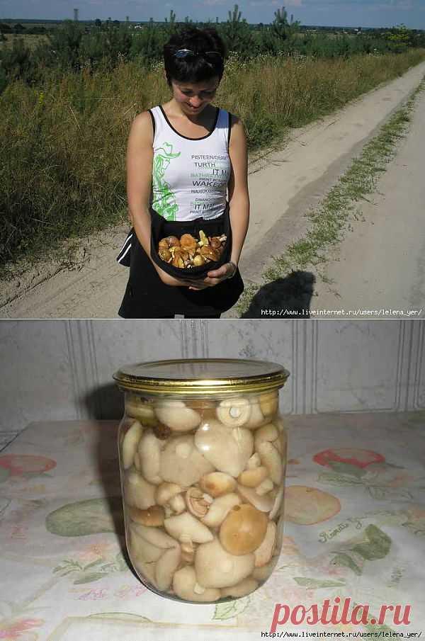 Маринованые грибы.