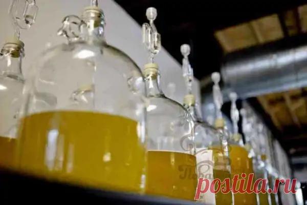 Холодное медовое ВИНО - домашний рецепт | Твой Поваренок | Яндекс Дзен