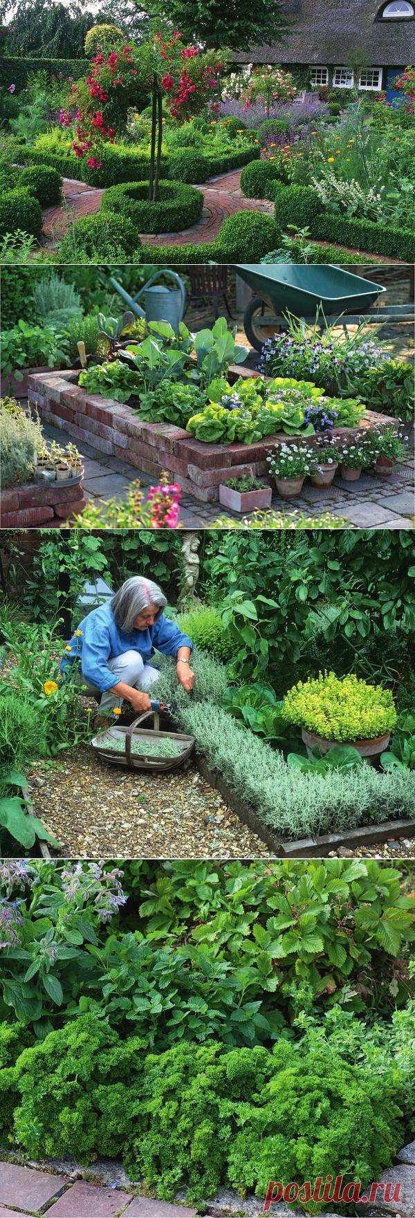 Идеи оформления цветников и грядок