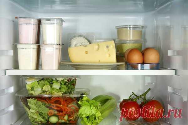 Продукты, которые всегда необходимо хранить в холодильнике   Путь к здоровью   Яндекс Дзен