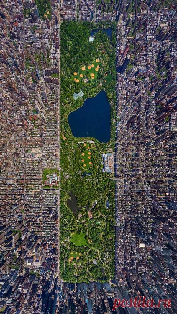 """Зеленая зона среди бетонных """"джунглей"""". Центральный парк Нью-Йорка с высоты"""
