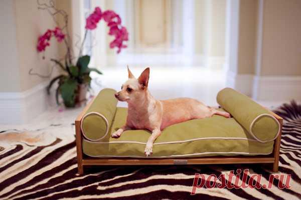 кроватка для любимца