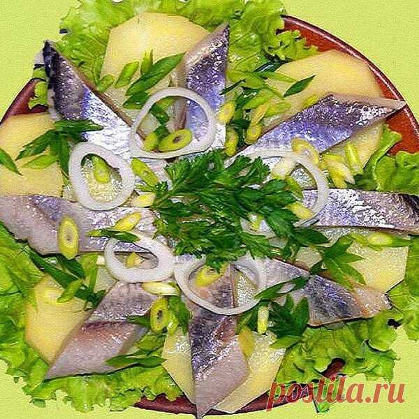 Праздничные рыбные нарезки. 10 вариантов оформления - Самые вкусные рецепты
