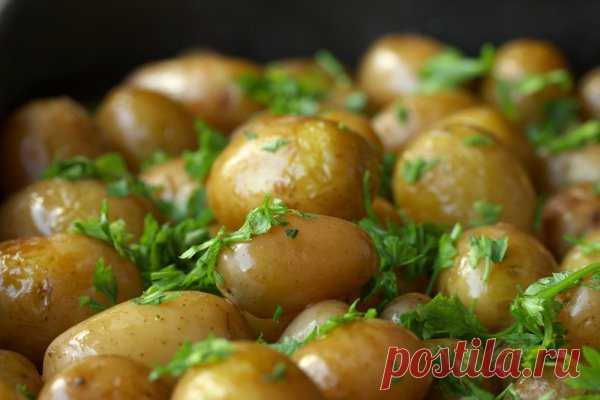 Молодой картофель, жареный в кастрюле - Рецепты. Кулинарные рецепты блюд с фото - рецепты салатов, первые и вторые блюда, рецепты выпечки, десерты и закуски - IVONA - bigmir)net - IVONA bigmir)net