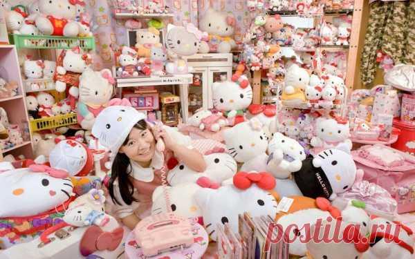 Крупнейшая коллекция предметов, связанных с «Hello Kitty», принадлежит Асако Канде из Японии. Девушка до отказа заполнила свой дом различными предметами с этой кошечкой – сковородки, вентиляторы, даже сиденье для унитаза.