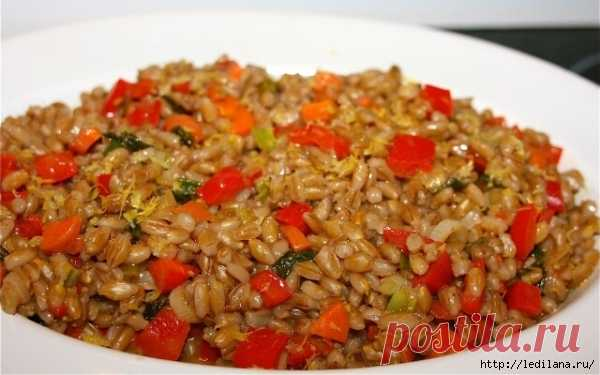 5 recipes of tasty and useful dishes from pearl barley