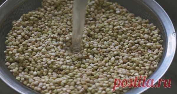 Por eso debes comer trigo sarraceno todos los días – Hoy En Belleza