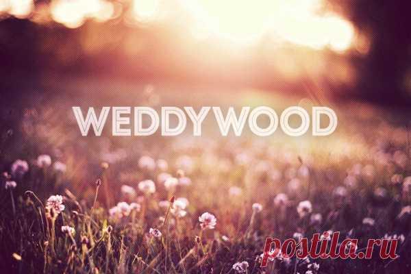 WeddyWood { Ведивуд } — проект для тех, кого объединяет любовь к современным, изысканным и элегантным свадьбам. Мы любим свадьбы со вкусом и делимся вдохновением, советами и рекомендациями, как сделать этот день незабываемым.