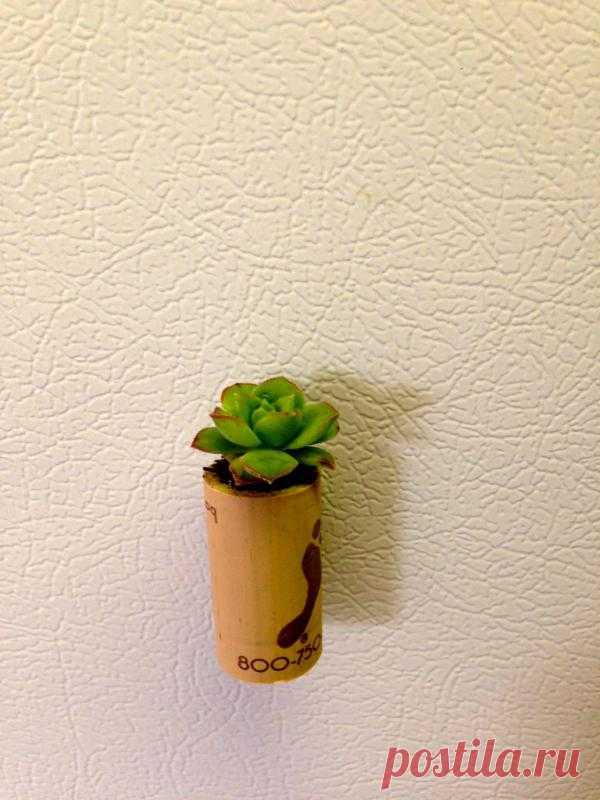 Вот такой маленький настенный горшочек с цветочком. Делается просто: небольшая ёмкость, к ней снаружи прикрепляется магнитик или сильная липучка, засыпается земляной смесью и садиться цветок, из тех, которые не сильно растут. Прикрепить можно к обоям или холодильнику.