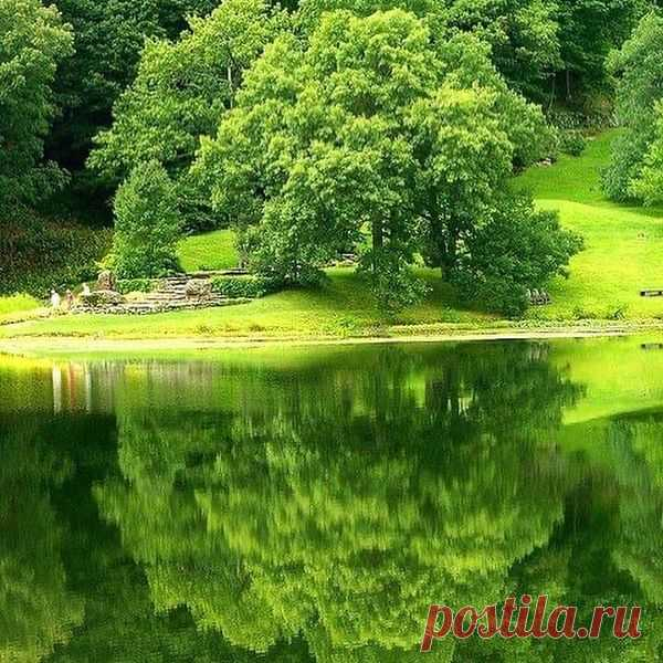Photo by Larisa on June 19, 2021. May be an image of tree, lake and nature.