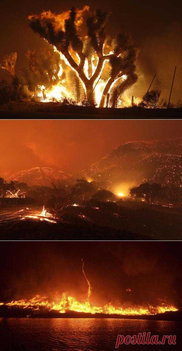 Страшные кадры лесных пожаров в Лос-Анджелесе