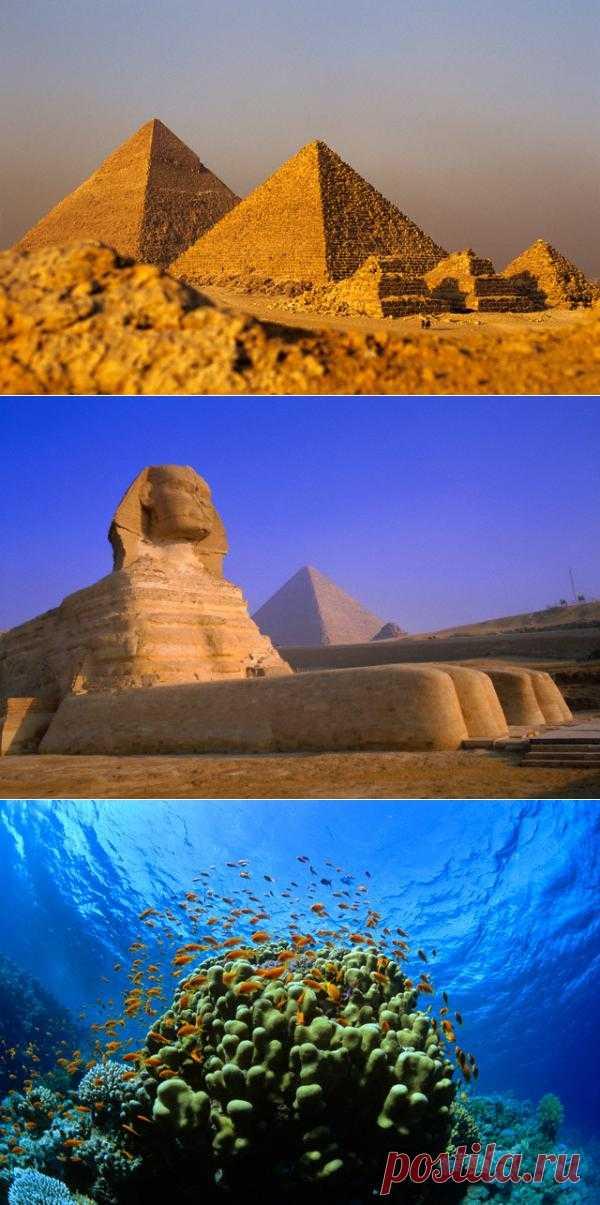 InVkus: Интересные факты о Египте, или кто отбил нос Сфинксу  Мумия фараона Рамзеса II имеет самый настоящий паспорт, как и любой другой гражданин Египта. В 1974 году состояние мумии по неизвестным причинам стало стремительно ухудшаться. Было принято решено отвезти ее Париж, там обследовать и разобраться в чем дело. Чтобы избежать оформления вывоза Рамзеса II как культурной ценности, что повлекло бы за собой долгую экспертизу, массу бумажной волокиты, мумии сделали паспорт. В паспорте было ука