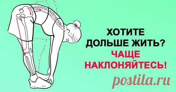 Хочешь жить дольше? Чаще наклоняйся!  Поясничная мышца — это самая глубокая мышца человеческого тела, влияющая на наш структурный баланс, мышечную интеграцию, гибкость, силу, диапазон движений, подвижность суставов и функционирование органов.  «Мышца души» находится в теле вовсе не в груди, как можно предположить, а в области таза. Стрессы современной жизни закрепощают ее, порождая проблемы со здоровьем.  Влияние образа жизни на здоровье  В даосской традиции поясничную мыш...