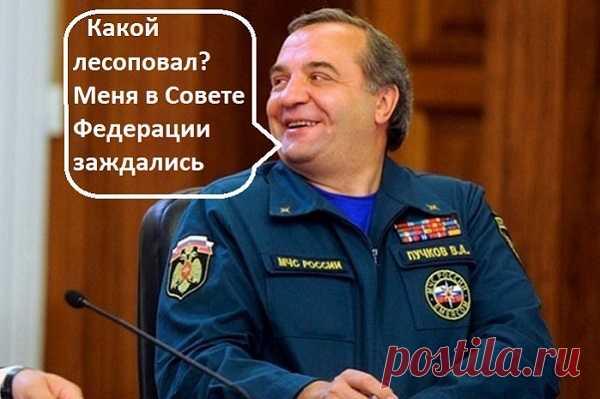 Бывший министр идёт в сенаторы. Про исчезнувшие в МЧС миллиарды тихо забыли - Новый блог Олега Лурье.